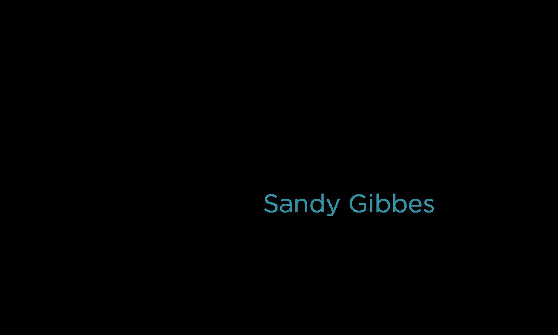 Sandy Gibbes - 5Q-Title-05-Sandy-Gibbes-01